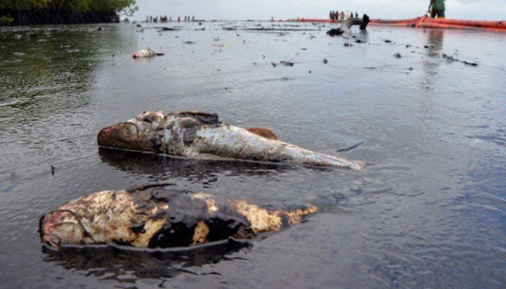 Niger-Delta-Oil-Spill