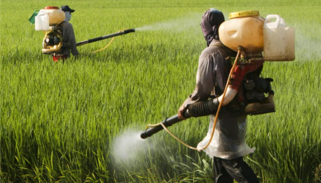 fertilisers-water-pollution-agriculture
