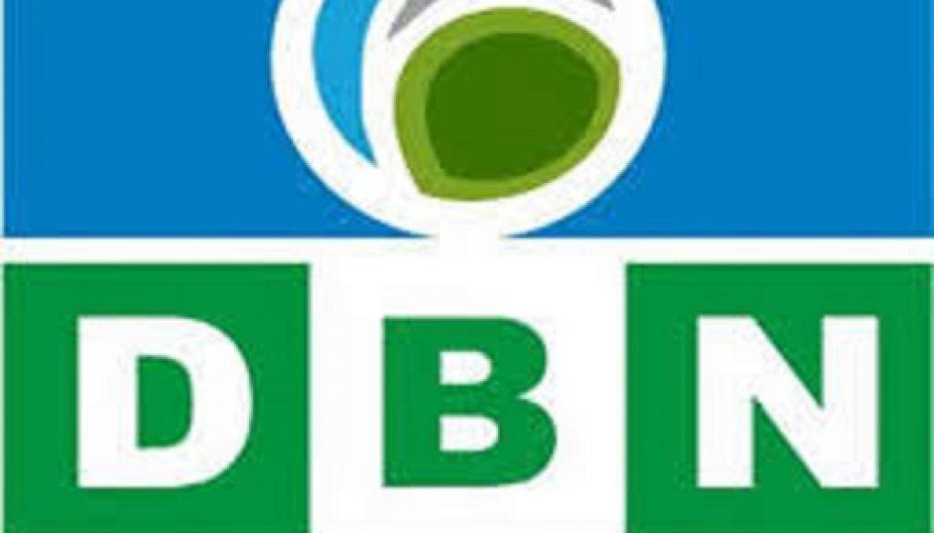 Development Bank of Nigeria gives N13b loans