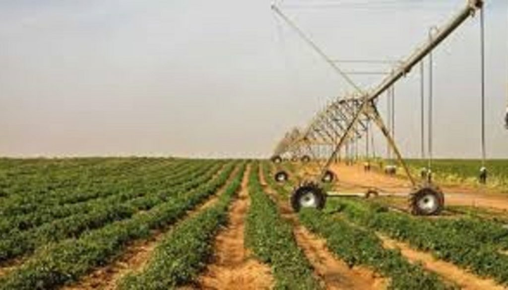 Agriculture pivot for economic growth