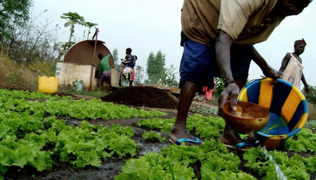 agric3