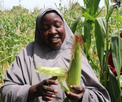 Women-in-farm-1140x640