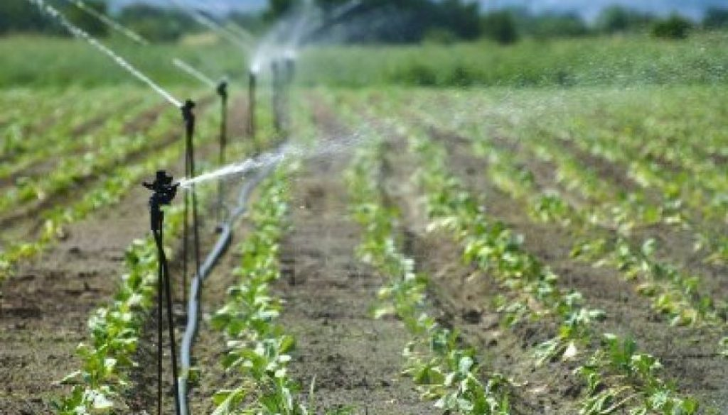 Irrigation-farming-2_750x499
