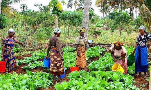 female-farmers-e1515428268631