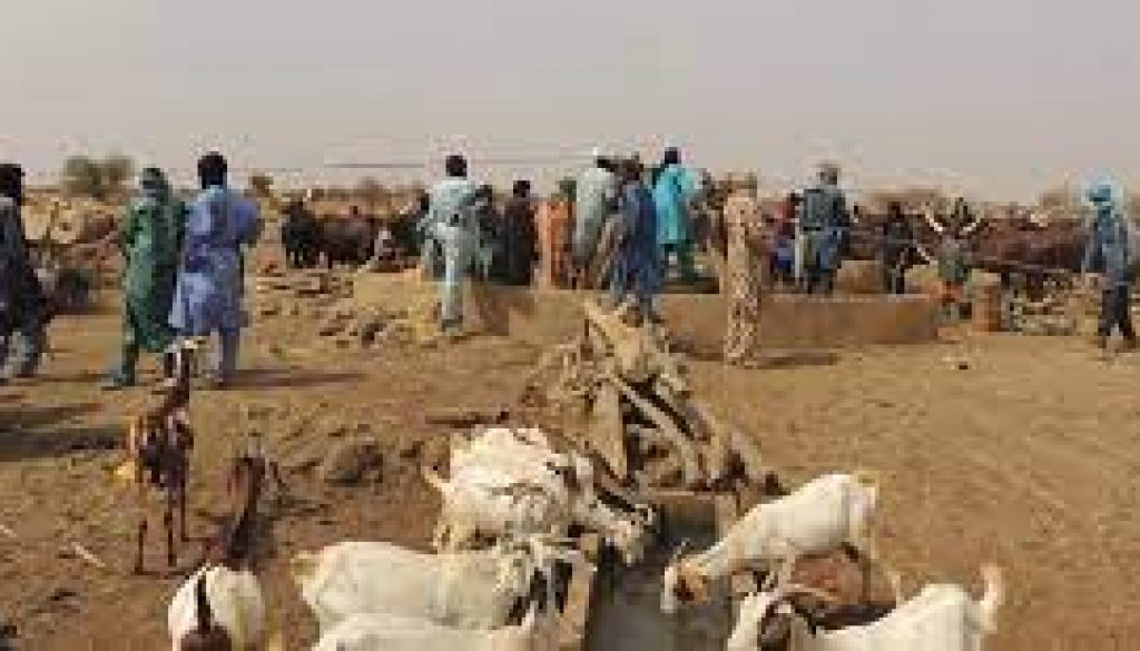 Agro pastoral